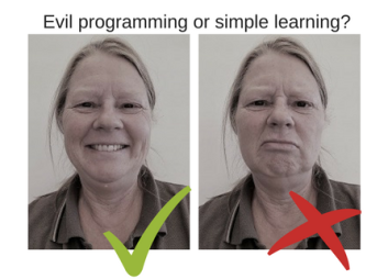 Evil programming or simple learning